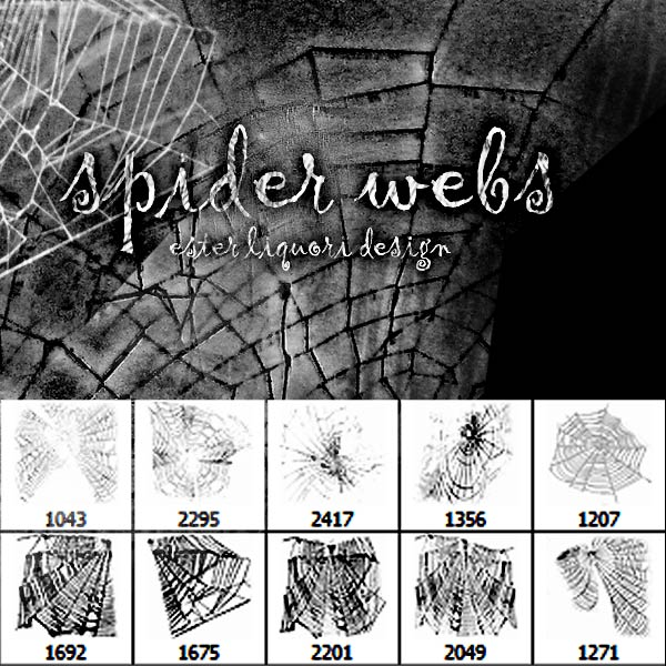 Spider Webs Brush Set